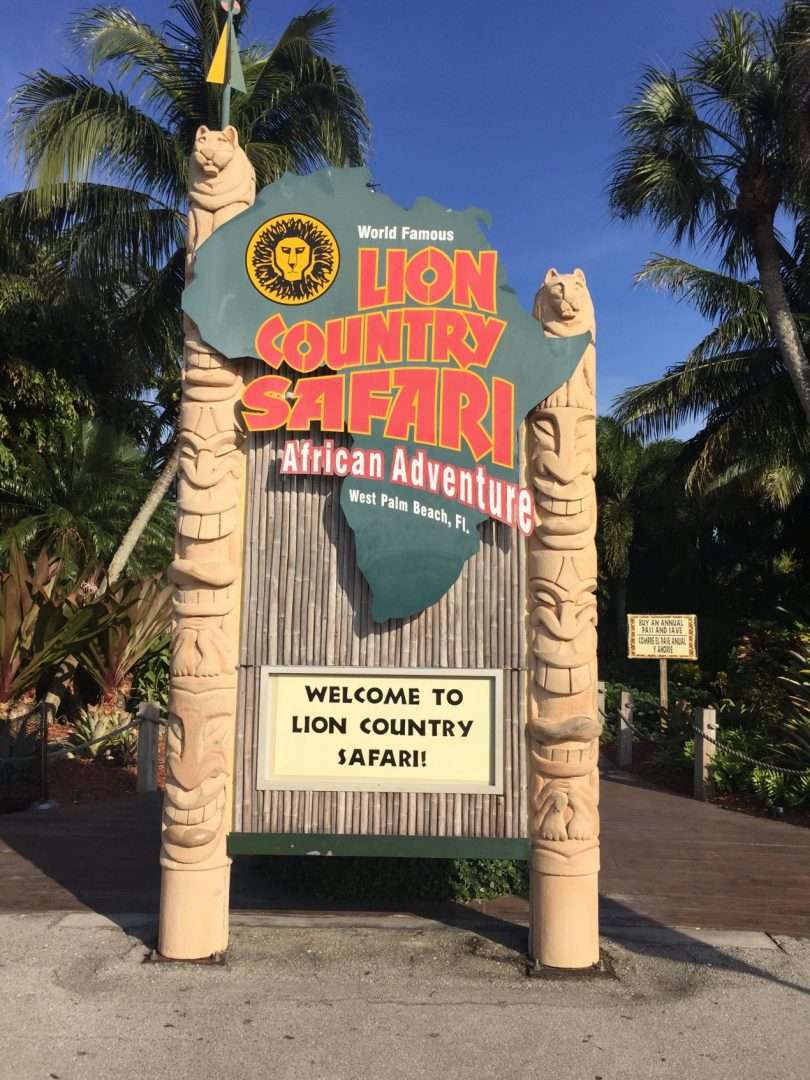 Lion Country Safari, West Palm Beach, U.S.A.