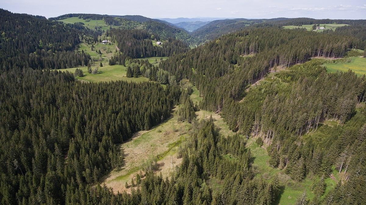 Rohrhardsberg, Black Forest, Germany