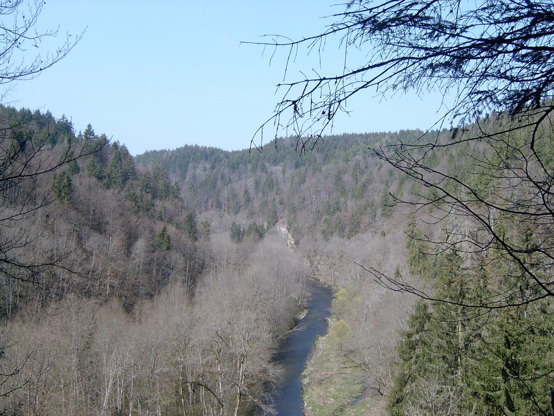 Wutach Gorge