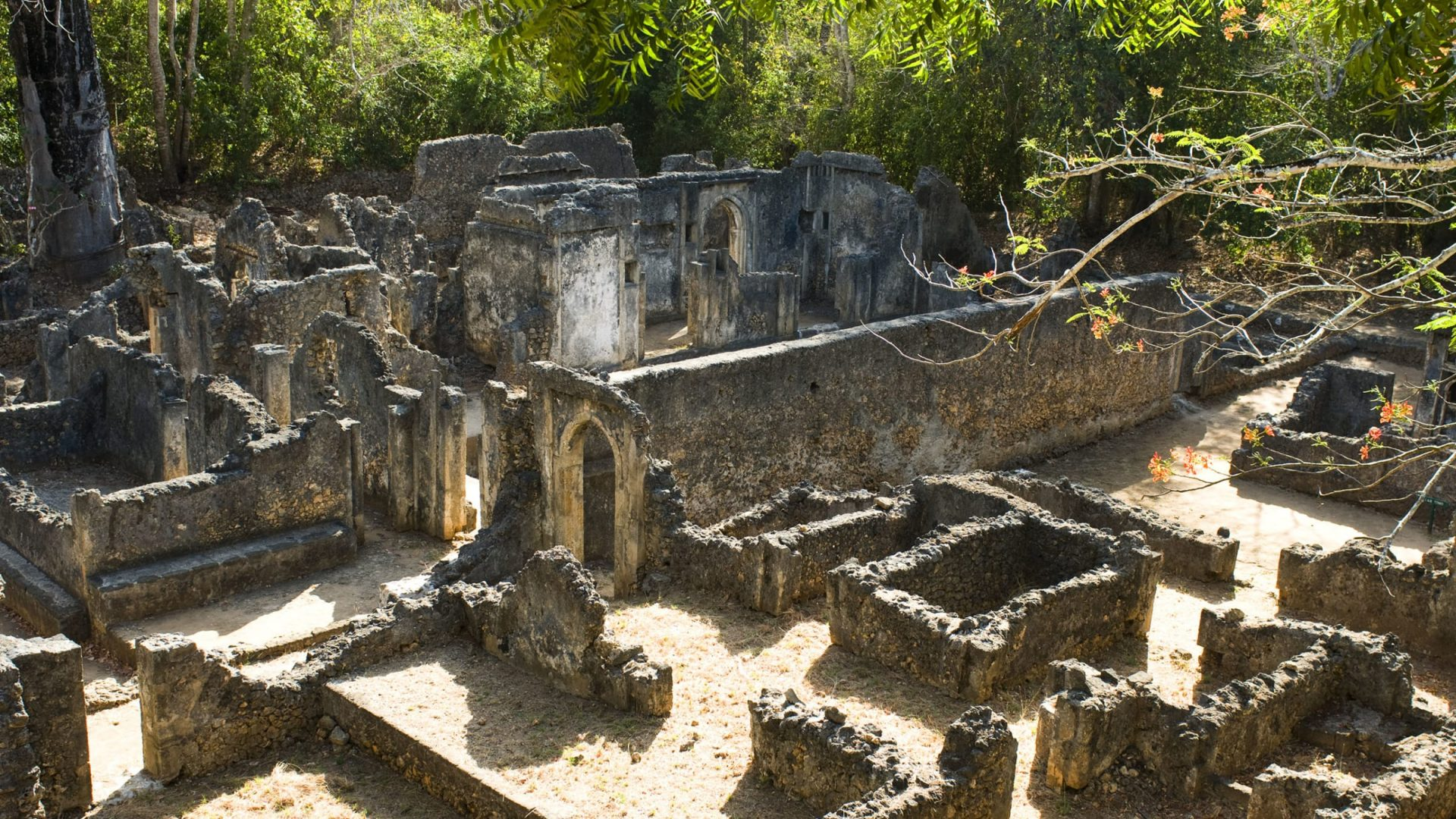 Ruins of Gedi, Malindi, Kenya