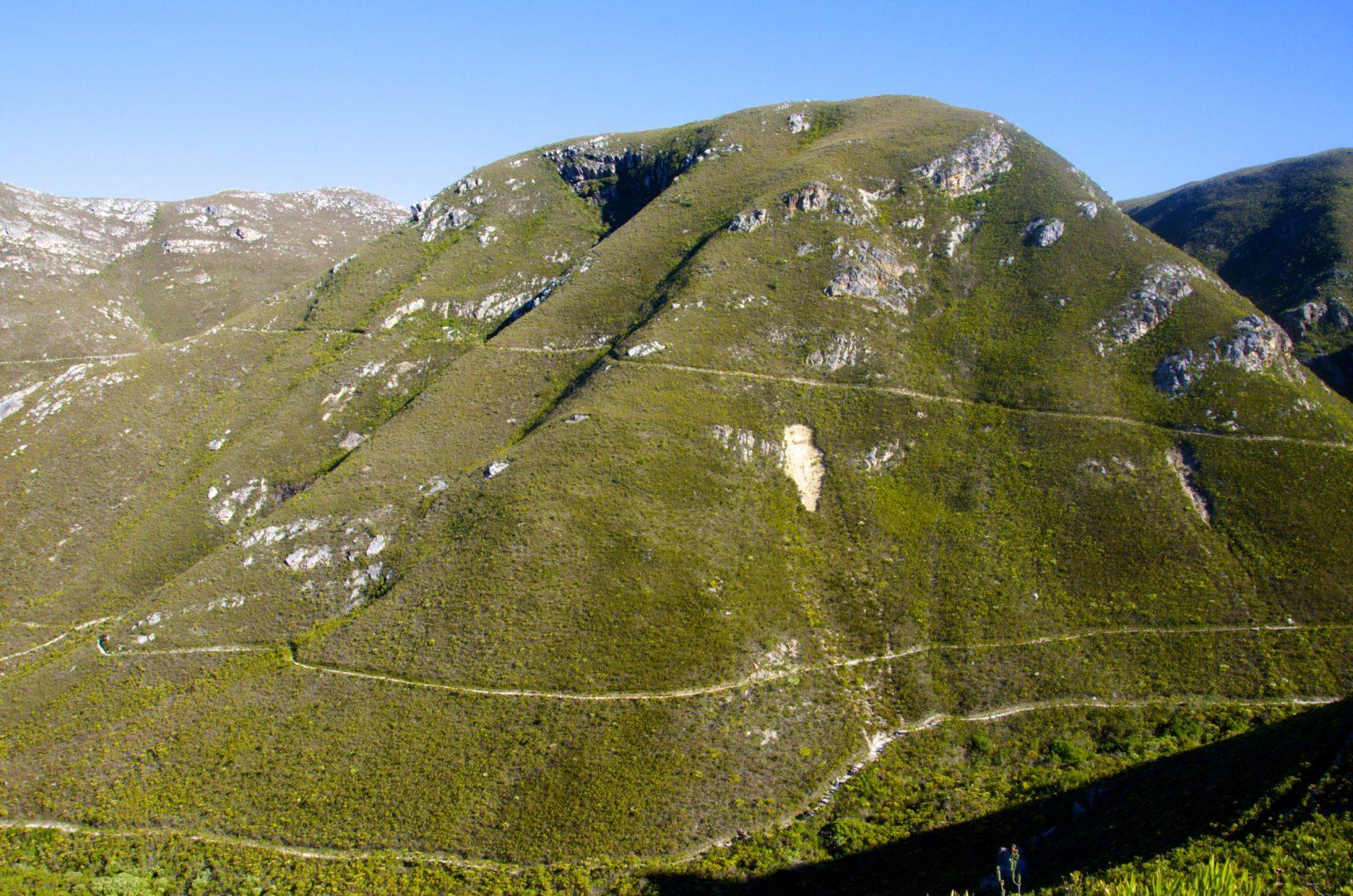 Fernkloof Nature Reserve
