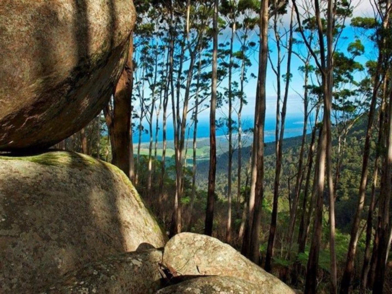 Gulaga National Park, Narooma, Australia