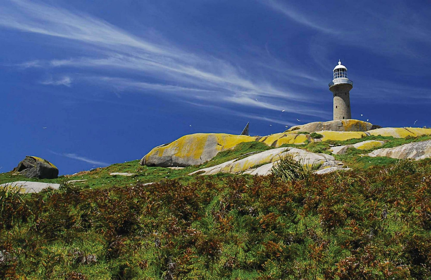 Montague Island Lighthouse, Narooma, Australia