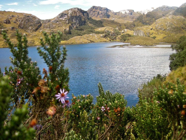 El Cajas National Park, Cuenca, Ecuador