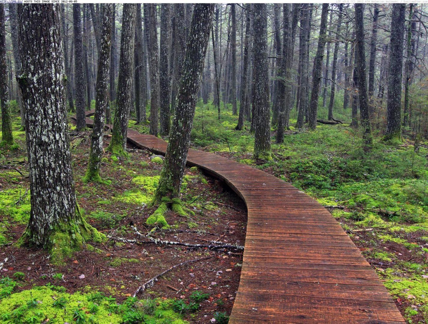 Kejimkujik National Park and National Historic Site, Nova Scotia, Canada
